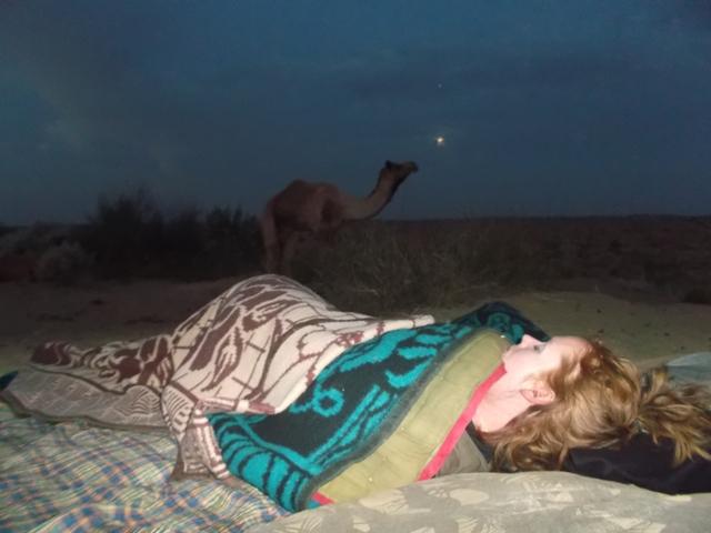Kamelen safari Jaisalmer, India