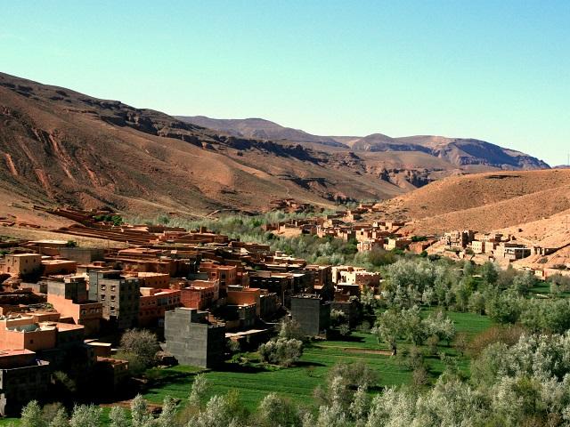 Marokko reis - dadelpalmen