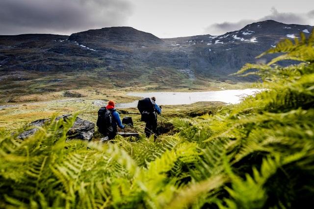 Lapland_hiking_Abisko