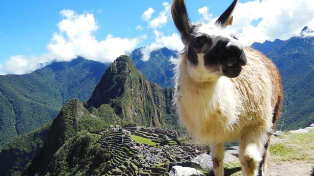 Salkantay Trek naar Machu Picchu