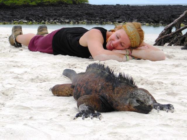 Slapen met marine iguana