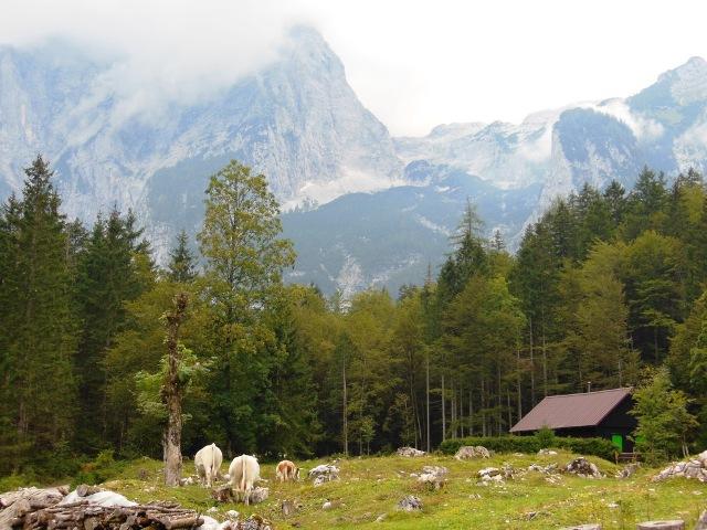 Kransjka-Gora, Slovenie