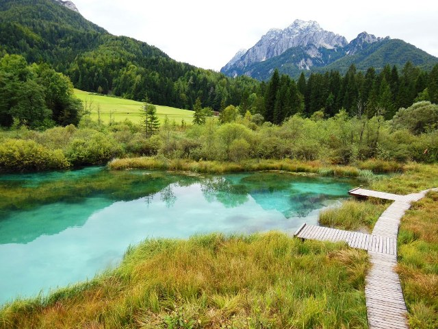 Zelenci bron, Slovenie