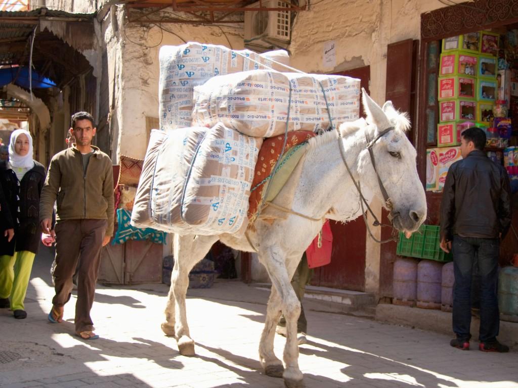 Marokko reis