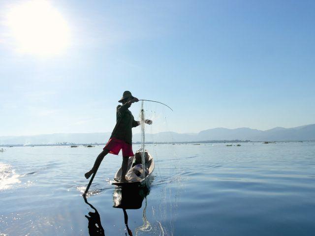 Myanmar: beenroeier op Inle Lake