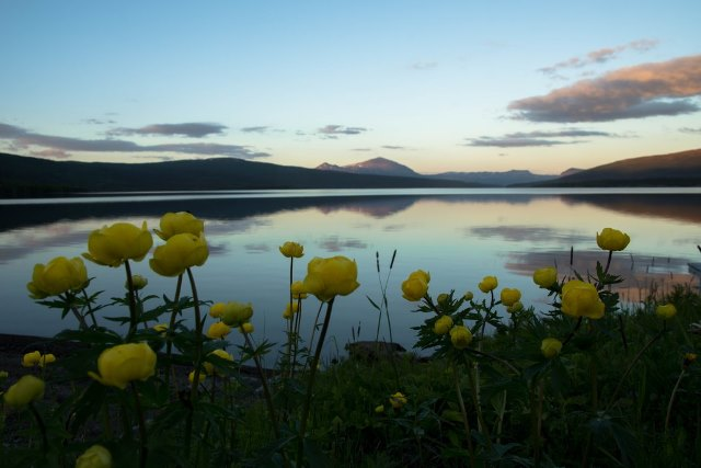 Lapland_Tarnaby_middernachtzon