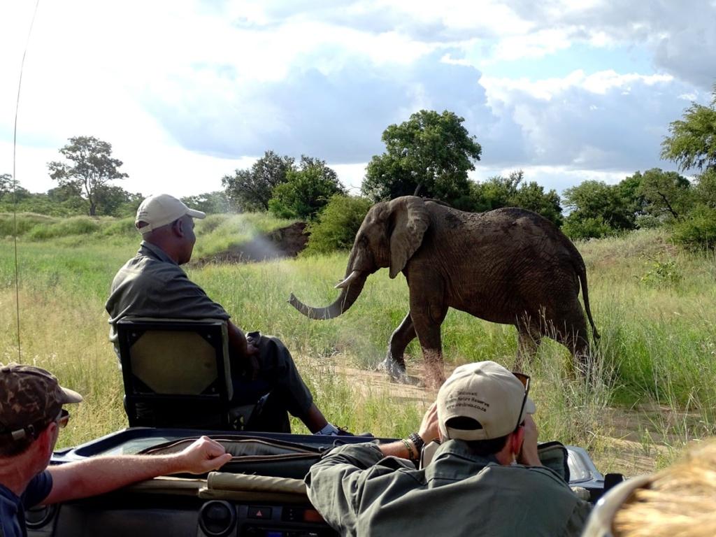 Safari Timbavati Private Game Reserve, Zuid-Afrika