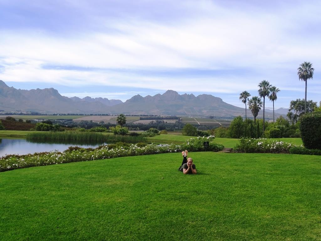 Stellenbosch: Zuid-Afrika's meest beroemde wijnregio (tip voor je Zuid-Afrika rondreis!)