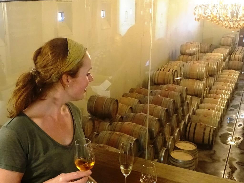 Wijnproeverijtje met zicht op een stokoude wijnkelder tijdens onze Bikes 'n Wine tour @Stellenbosch (Zuid-Afrika rondreis tip!)