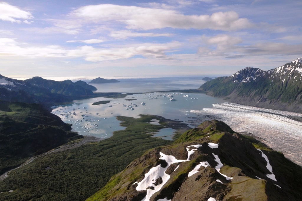 Alaska cruise en rondreis tip: Bear Glacier in Kenai Fjords National Park