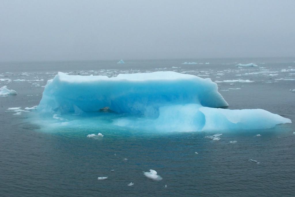 Cruise in Alaska: Colombia Gletsjer kajak safari (Alaska vakantie tip!)