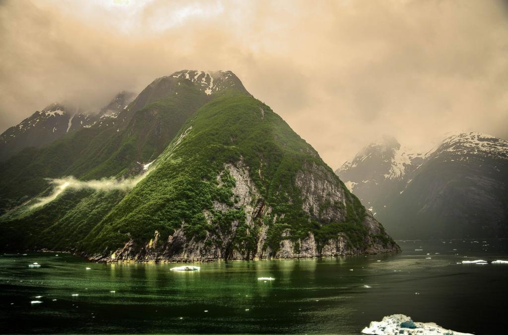Cruises in Alaska naar de Tracy Arm Fjorden, vlakbij hoofdstad Juneau